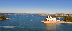 Opera House in Context, Sydney, New South Wales, Australia (D200-PAUL) Tags: sydneyoperahouse operahousesydney sydneyharbor sydneyharborbridge mrsmacquariespoint macquariespoint mrsmacquarie circularquay royalbotanicgardens jørnutzon utzonjørn jornutzon utzonjorn josephcahill cahilljoseph operaaustralia theaustralianballet sydneytheatrecompany sydneysymphonyorchestra unescoworldheritagesite unesco worldheritagesite sydney newsouthwales australia paulfernandez