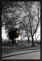 Battery Park Duotone (mariogdb) Tags: duotone duotono batterypark park nyc newyork nuevayork bw bn blackwhite blanconegro blackandwhite monochrome monocromo