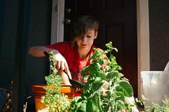 Leanne (BurlapZack) Tags: summer portrait plants garden diy bokeh gardening pottedplants porch m42 summertime dfw planter manualfocus frontdoor planting ladle herbgarden greenthumb screwmount dallastx pack06 addisontx smctakumar28mmf35 legacyglass pentaxk5 vscofilm bigolspoon