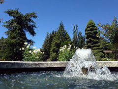 """Woodland Park Rose Garden (vkpdrx) Tags: seattle park urban sculpture public water fountain pool rose architecture woodland garden landscape concrete flow waterfall washington cool map c small formal bubbles fresh architectural oasis wash waterfalls e wa classical 1922 mapping refreshing feature amenity garden"""" """"public pool"""" """"guy """"water 98103 """"howard feature"""" """"woodland andrews"""" phinney"""" architeural flickrcomgroupsseattlefountainsandpools"""
