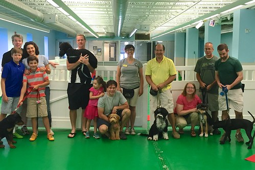 """Puppy Head Start, Session H, Summer 2015-Sat; Class photo 2 • <a style=""""font-size:0.8em;"""" href=""""http://www.flickr.com/photos/65918608@N08/19749189973/"""" target=""""_blank"""">View on Flickr</a>"""
