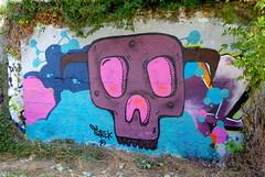 Skull by Tarek, Rennes 2015 (Pegasus & Co) Tags: urban streetart color art collage painting skulls skull graffiti mural drawing collages lifestyle drawings dessin menatwork hype graff beautifulcolors mur bd bombing spraycan dessins artistes  urbain tarek crne   arturbain  artsdelarue artgraffiti