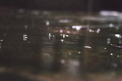 (Fer Devincenzi) Tags: wet water rain outdoors drops lluvia agua gotas nublado humedad alrasdelpiso