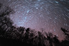 Star Trails (justinherrold1) Tags: stars pa pennsylvania startrails astro astrophotography northstar trees forest rural cosmos pink longexposure