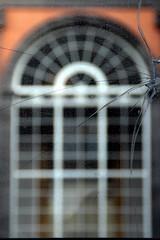 Wounds... (modestino68) Tags: vetro glass finestre windows crepe cracks