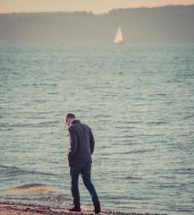 Quiet contemplation (Objects1000) Tags: tamron150600mm man beach strollig contemplation water moody nikond750 manwalking beachwalker walk seattle washington unitedstates us