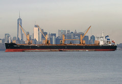 PAROS SEAS in New York, USA. January, 2017 (Tom Turner - SeaTeamImages / AirTeamImages) Tags: vessel ship cranes anchor anchorage stapleton statenisland cargo bulker tomturner bay parosseas spot spotting marine maritime pony port harbor harbour transport transportation newyork nyc bigapple usa unitedstates manhattan skyline manhattanskyline newyorkskyline