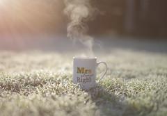 Frosty Mornings and Hot Tea.. (KissThePixel) Tags: frost frosty grass tea cup steam frozen morning sunrise sunlight cupoftea mum wife love family nikond750 sigma depthoffield macro bokeh softbokeh realbokeh