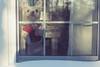 My friend (Andrezza Haddaway) Tags: dog window frenchbulldog frenchie cutie