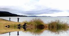 Fishing is DOUBLE the Fun (Lani Elliott) Tags: water fishing foliage sea scenic scenictasmania tasmania australia moody moodysky