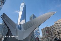 IMG_3808.jpg (Ric Charlton) Tags: 2016 newyorkcity september newyork