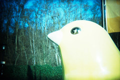 Zeche Zollverein (somekeepsakes) Tags: 2013 essen holga135 kodakelitechromeeb100 ruhrgebiet analog analogue crossprocessed deutschland europa europe film germany industriekultur lomo plasticlens toycamera xpro zechezollverein