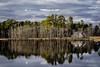 011317-152138 (Glenn Anderson.) Tags: pond lake water holtspond cypreestrees reflection dock deck clouds pine green johnsoncounty pigcooker minivan basketballgoal house pergola