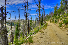 Blue Skies (jimgspokane) Tags: themagrudercorridor mountains mountainroads forests trees idahostate camping otw