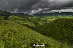 Dzukou Valley-The garden of Eden (shaan2noo) Tags: dzukou dzukouvalley japfu nagaland manipur northeast india hills green greenscape clouds coudscape nature travel paradise incredibleindia theoriginalgoldseal