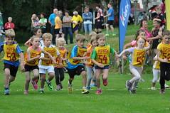 Das Rennen der Schüler