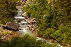turquoise canyon creek (ohikura) Tags: montana turquoise glaciernationalpark canyoncreek rockflour manyglacier