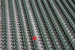 The Red Seat at Fenway Park