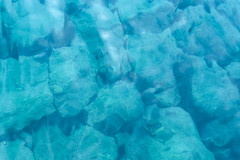IMG_2852 (griffey_kao) Tags: okinawa akajima