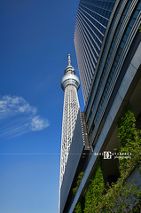 """While I Gazed Into The Blue Sky"" Tokyo Skytree, Japan (davidgutierrez.co.uk) Tags: city travel sky urban color building art broadcast beautiful japan architecture modern skyscraper photography restaurant tokyo design asia pentax contemporary unique capital engineering landmark structure lookingup highrise scifi 日本 nippon metropolis 東京 sumida futuristic tokio observationtower edgy 도쿄 megacity nikkensekkei neofuturistic skytree токио tokyometropolis davidgutierrez londonphotographer tokyoskytree davidgutierrezphotography wwwdavidgutierrezcouk pentaxk5iis"