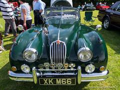 Vintage car show Porthcawl 20150801- Jaguar (Mooganic) Tags: car classic porthcawl jaguar xk m66
