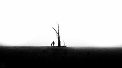 (Emilien Gass) Tags: blackandwhite bw shadow silhouette landscapes tree child canon 550d tokina1116mm mist fog
