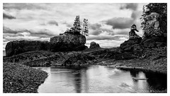 Baxter's Harbour (Moe W) Tags: baxtersharbour novascotia canada bayoffundy mauricewoodworth fujifilm xe2 blackandwhite lowtide rocks trees boulders stream shore islet island silverefexpro2