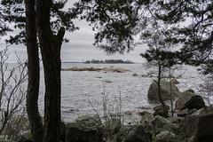 Island Framed (KevPBur) Tags: epz1650mmf3556oss finland fortelisabeth kotka luotsikuusinen sonya6000 ilce6000 suomi tree varissaari framed grey rocks sea sonya6000ilce6000 kymenlaakso