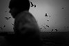 joe #3 (chrisfriel) Tags: joe pickhaver friel memory
