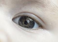 Baby eye colours (danigutib) Tags: baby eye nikon ojo pupila iris colours colores macro micro gutipictures guagua bebe pestaña eyelashes ceja eyebrow white palido blanco niño boy look mirar stare child inside persona people face gente