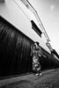At the streets of the ancient capital ( Cocoro Kusano ) (HarQ Photography) Tags: monochrome blackandwhite fujifilm fujifilmxseries xf1024mmf4rois xt2 portrait concept japan nara