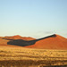 PICT0017 - Namibia 2010 Sossusvlei