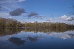 Fenêtre sur lac (Titole) Tags: reflection bassindetrévoix essonne clouds trees water titole nicolefaton sky blue