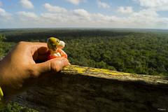 El Viaje (sierramarcos14695) Tags: sony a58 guatemala peten selva ladanta elmirador cuenca explorando viaje elviaje snoopy mano baranda piramide maya cielo horizonte arboles nature naturaleza travel bosque