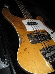 wolfmother rick (reptile house) Tags: bass 71 wolfmother rickenbacker reptilehouse 4001