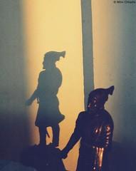 Shivaji Maharaj Shadow