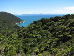 IMG_3231.jpg (Bebakus) Tags: newzealand southisland abeltasmannationalpark abeltasmancoastaltrack