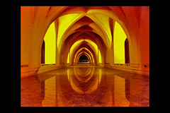 Seville: Alcazar/ 2002-(updated 2008) (Freund Studio) Tags: reflection water beautiful architecture interestingness cool spain bravo been1of100 arcade arches seville symmetry explore alcazar 3000v flickrfavs flickrhits 10000views 2222v22f supershot 2000v instantfave interestingness276 50favs i500 i500blogged 5000v 100favs 35faves byarchitect4 200favs good1 danfreund fivestarsgallery danfreundarchitect cotcmostfavorites abigfave myportfoliobest architect4 portfolio10 8000v colorphotoaward holidaysvacanzeurlaub 400favs photobydanfreund2007allrightsreserved 4seearchitecture 300favorites artlegacy myportfoliobest13 thegoldendreams exploreheaven myportfoliobest18 7500v 2010danfreund wwwfreundstudiocom freundstudio