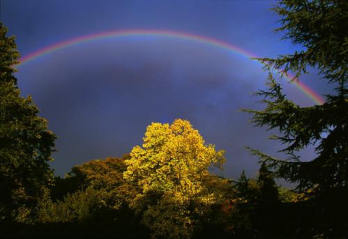 Edgbaston Rainbow on Flickr