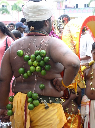 A Lord Muruga devotee at Batu caves shows his bare back where several lemons are hooked on to his skin
