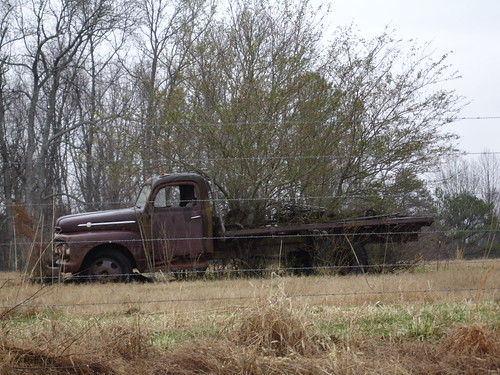 Trees Growing Through Flatbed Truck, Cullman County AL