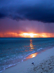Sunrise (Greg Adams Photography) Tags: heron sunrise island great barrier reef myfavorites hhsc2000