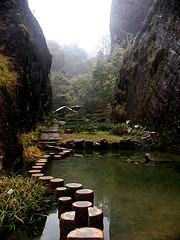Wuyishan - Da Hong Pao Tea Farm (Sam's Exotic Travels) Tags: china mountain sam scenic 100v10f area sams wuyi travelphotos wuyishan samsays abigfave samsexotictravelphotos exotictravelphotos samsayscom globalbackpackers