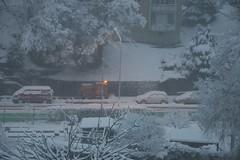 snow cleaning (Dreamer7112) Tags: snow 20d schweiz switzerland europe suisse canon20d zurich canoneos20d snowing zrich svizzera winterwonderland eos20d zurigo limmatwest latemarchsnow