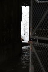 in the backyard (Dreamer7112) Tags: door city winter urban snow 20d schweiz switzerland backyard europe doors suisse suiza picturesthroughholes canon20d zurich citylife canoneos20d simplicity urbannature snowdays snowing zrich svizzera zuerich winterwonderland eos20d zurigo wintermadness urbanlifeinmetropolis sightseeingzurich everydaylifeinswitzerland recordsnowfall