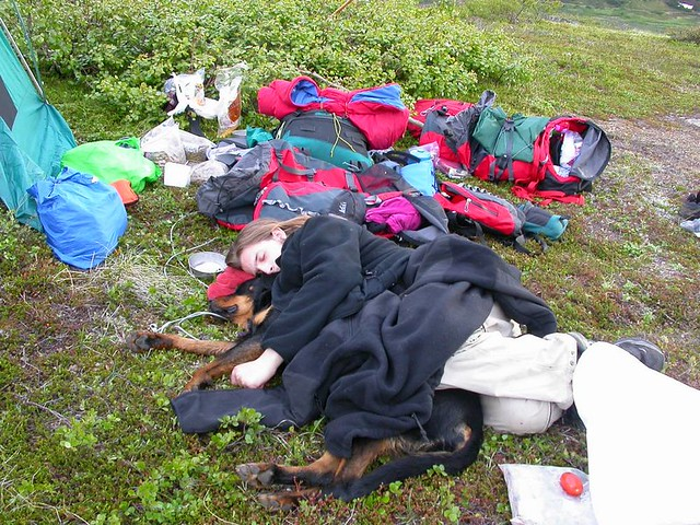 Resting up from another hike. Powerline Pass, Chugach Mountains, 2006. The dog here is Sweetheart.