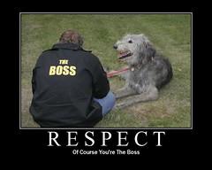 R_E_S_P_E_C_T (the_steve_cox) Tags: boss irish dog man fdsflickrtoys respect canine irony motivation leash wolfhound irishwolfhound bigdog stevecox photoportunity photoportunitycom gottalovemeimthepuppy