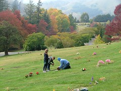 autumn ritual (go wild - NZ outside) Tags: new autumn color cemetery lawn 2006 zealand nz grief connections chldren favcol gowild cf3603 hvn1659