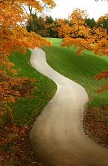 AngusGlen18path.jpg (gallow_chris) Tags: travel orange ontario game tree green fall leaves yellow landscape nikon path d2x golfcourse chrisgallow golfprints ©chrisgallow allrightsarereserved