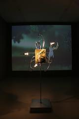 Double_Fantasy@Night-Sites_exhibition - 40 (mccoyspace) Tags: doublefantasy hannoverkunstverein nightsitesexhibition